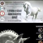 At ve Nalbant Eğitim Seminerleri