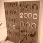 Uludağ Üniversitesi Atçılık Eğitim
